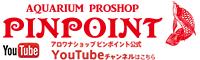 アクアリウムプロショップピンポイントYouTube